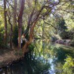 zona río campamento